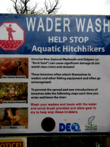 How You Can Help - Stop Aquatic Hitchhikers